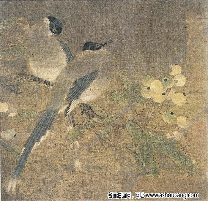 宋 佚名《山鹊枇杷图》国画高清大图下载